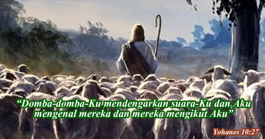 domba-dombaku mendengarkan suaraku